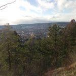 Blick auf Jena TNetzbandt thib24.de 750