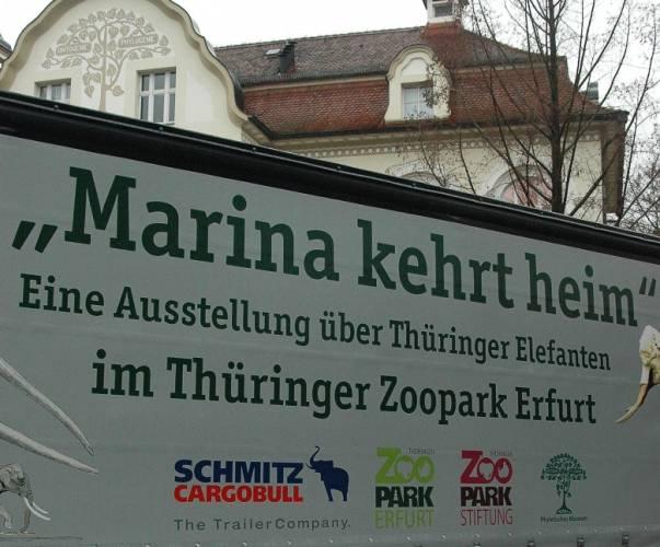 Marina ist in den Thür. Zoopark heimgekehrt
