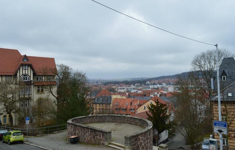Eisenach: Baum-Paten gesucht