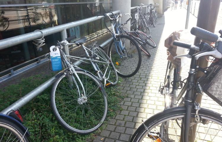 Weimar: Fahrrad-Auktion im März