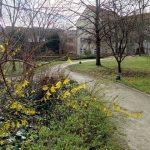Frommanscher Garten Frühling TNetztbandt thib24