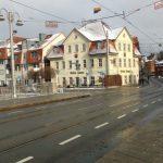 Grüne Tanne Winter Schnee Symbol TNetzbandt Thib24.de 750