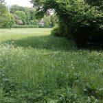 Ilmpark Weimar Park an der Ilm Ansichten Blick auf Goethes Gartenhaus TNetzbandt thib24.de