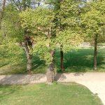 Ilmpark Weimar Park an der Ilm Ansichten Blick auf Reithaus TNetzbandt thib24.de