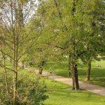 Ilmpark Weimar Park an der Ilm Ansichten Blick auf Schlosskirche StadtschlossTNetzbandt thib24.de