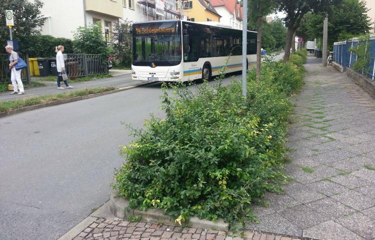 Nachverkehr Jena: Vordertür bei Bussen bleibt geschlossen