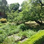 Schillers Gartenhaus Mai 16 TNetzbandt thib24.de