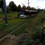 Erfurt Straßenbahn Buga Rasengleis TNetzbandt thib24.de 750
