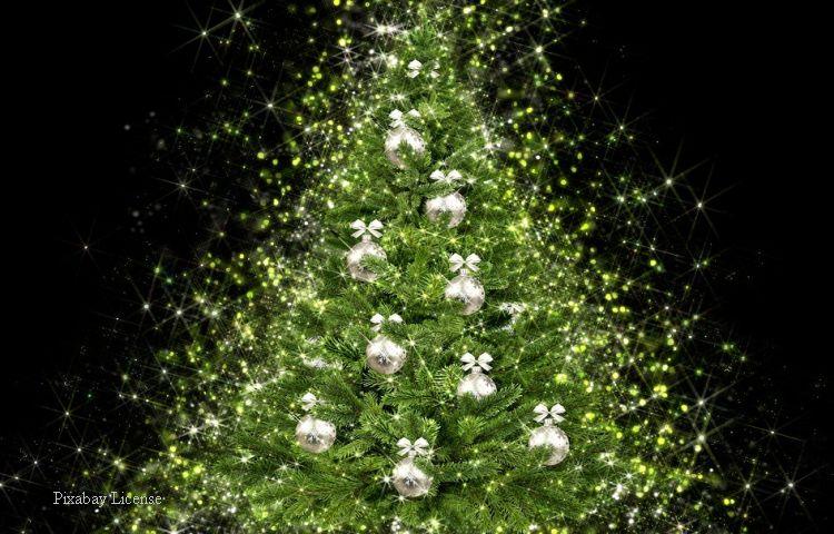 Altenburg: Weihnachtsbaum gesucht für Weihnachtsmarkt gesucht