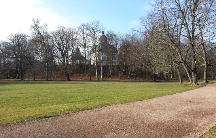 Gotha: Baum im Schlosspark in Brand gesteckt