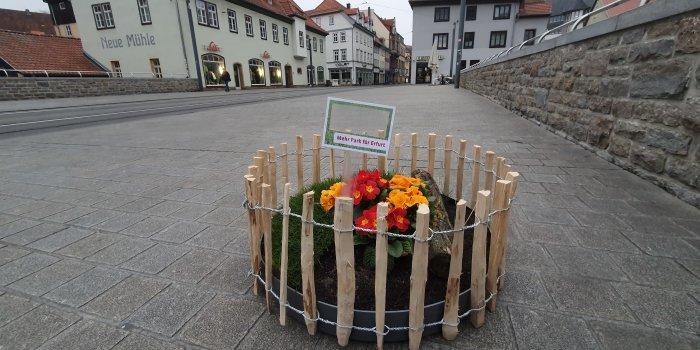Erfurt: 30 kleine Blumengrüße in der Stadt verteilt