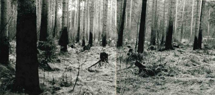 Gotha: Ermittlung zu brutalem Mord von 1990 wieder aufgenommen – Zeugen gesucht